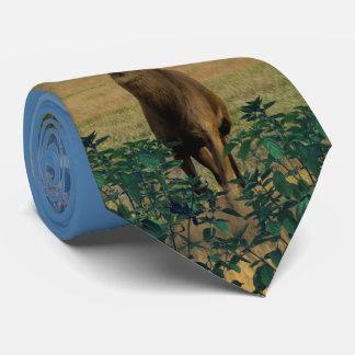 Buck Deer Pasture Neck Tie