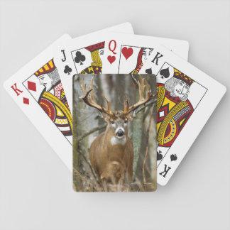 Buck Deer Playing Cards