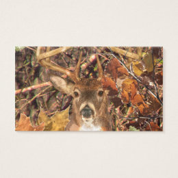 Camouflage business cards templates zazzle buck in camo white tail deer business card colourmoves