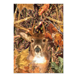 Buck in Camo White Tail Deer Card