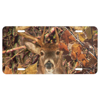 Buck in Camouflage White Tail Deer License Plate