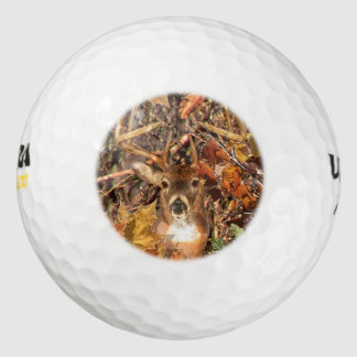 Buck in Fall Camo White Tail Deer Pack Of Golf Balls