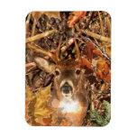 Buck in Fall Camo White Tail Deer Rectangular Photo Magnet