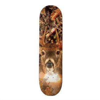 Buck in Fall Camo White Tail Deer Skateboard Deck