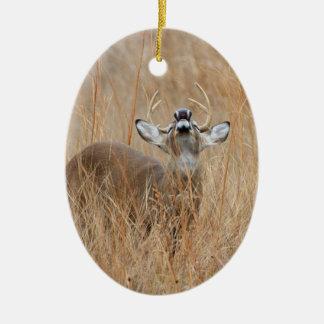 Buck in the Grass Ceramic Ornament