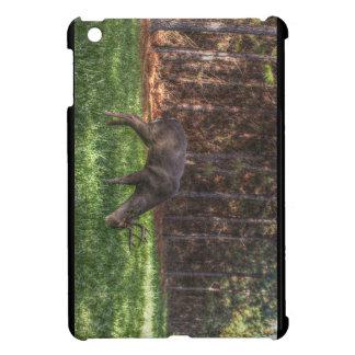 Buck iPad Mini Covers