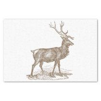 Buck Mule Deer Letterpress Style Tissue Paper