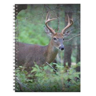 Buck Notebook