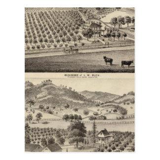 Buck res, Bunker Hill Farm Postcard
