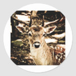 Buck Round Sticker