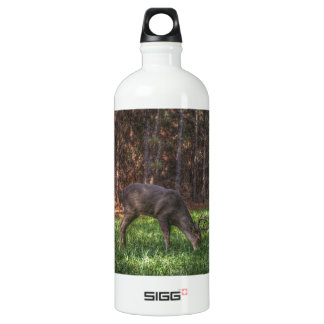 Buck SIGG Traveler 1.0L Water Bottle