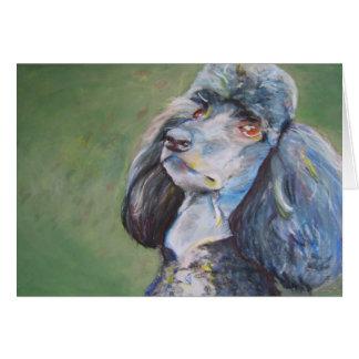 Buck, Standard Poodle Card