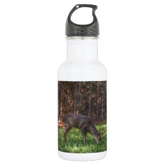 Buck Water Bottle