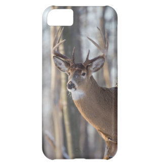 Buck Whitetail Deer Cover For iPhone 5C