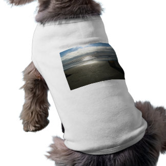 Bucket and the Sunset T-Shirt
