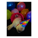 Bucket Lucy Greeting Cards