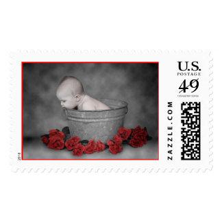Bucket & Roses Postage
