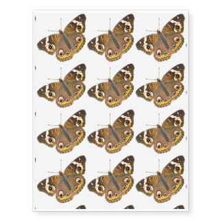 Buckeye Butterfly Eyespots Temporary Tattoos