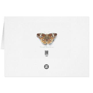 Buckeye Butterfly note card