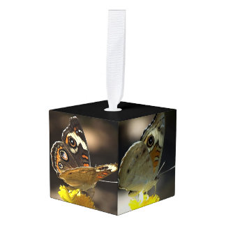 Buckeye Butterfly on Yellow Flower Two Views Cube Ornament