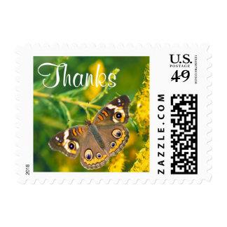 Buckeye Butterfly - Thanks Postage