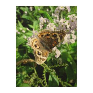 Buckeye Butterfly Wood Wall Decor