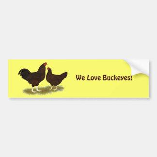 Buckeye Chickens Bumper Sticker