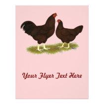 Buckeye Chickens Flyer