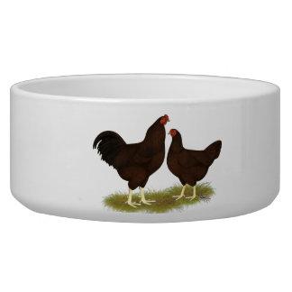 Buckeye Chickens Dog Food Bowls