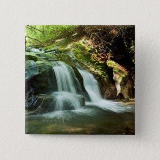 Buckeye Creek Falls Pinback Button