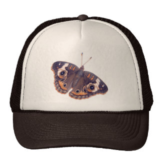 Buckeye Hats
