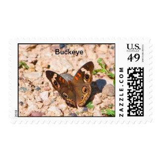 Buckeye Postage Stamps