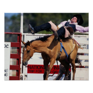 BUCKING BRONCO AT RODEO 3 POSTER