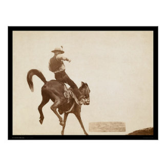 Bucking Bronco SD 1888 Poster