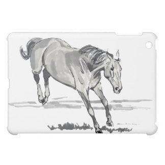 Bucking iPad Mini Covers