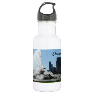 Buckingham Fountain - Chicago Stainless Steel Water Bottle