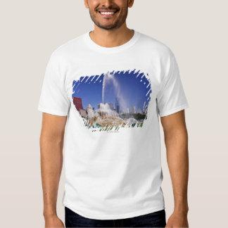 Buckingham Fountain T Shirt