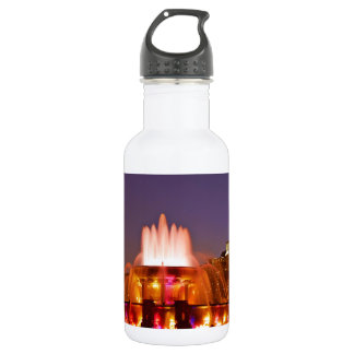 Buckingham Fountain Water Bottle