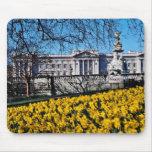 Buckingham Palace, flores de Londres Alfombrillas De Ratones