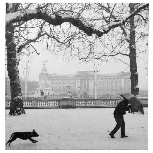 Buckingham Palace London England Cloth Napkin