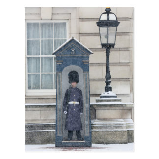 Buckingham Palace London England Postcard