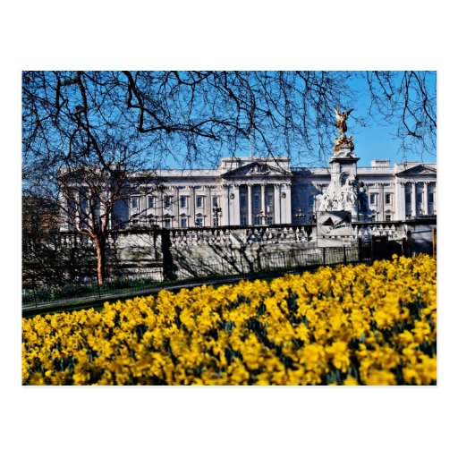 Buckingham Palace, London  flowers Postcard