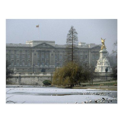 Buckingham-Palace Postcard No.7