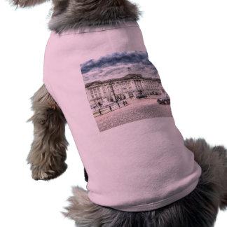 Buckingham Palace Snow Shirt