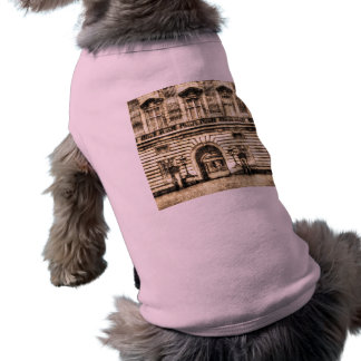Buckingham Palace Vintage Shirt