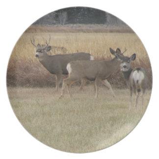 Bucks and Doe Deer Plate