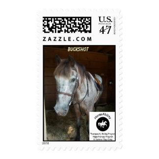 BUCKSHOT Commemorative  Stamp
