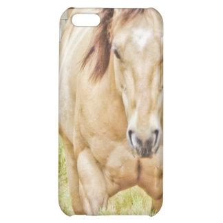 Buckskin Horse Case iPhone 5C Cases