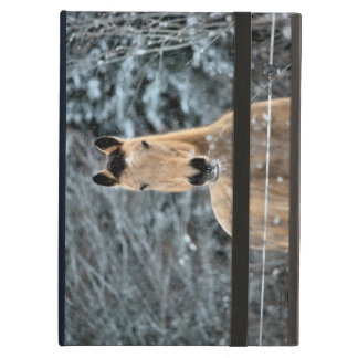Buckskin Horse Winter iPad Air Case