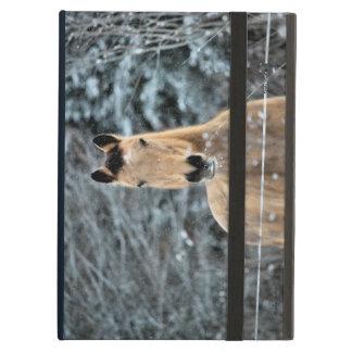 Buckskin Horse Winter iPad Air Cover